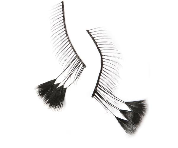 EYELASHES BIRD