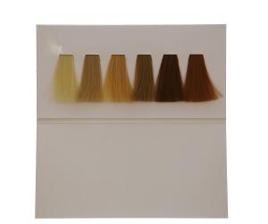 HAIR CARD LIGHT-WARM-COLD